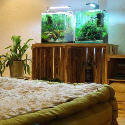 Zwei Aquarien Thumbnail Foto